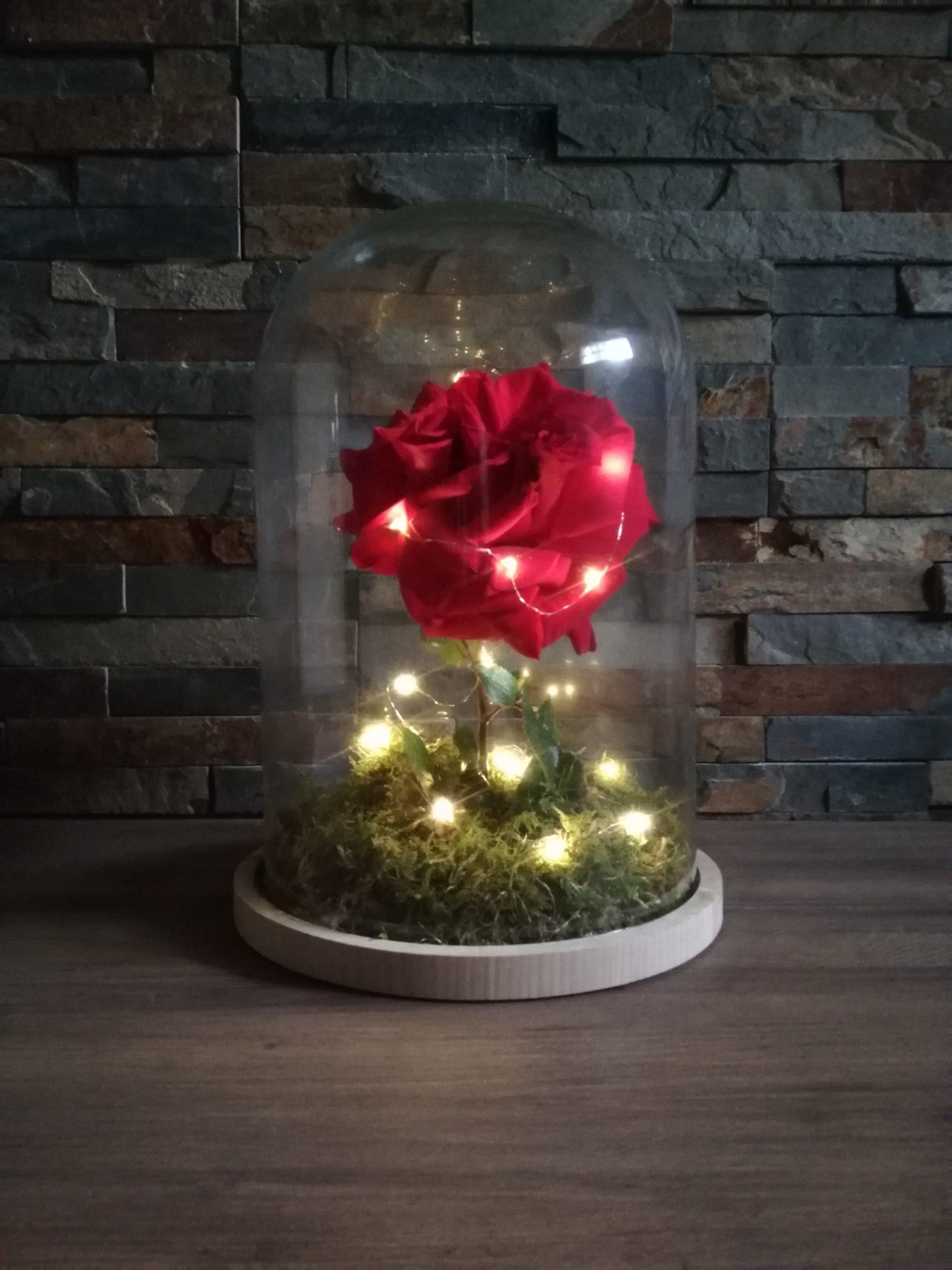 Décoration : Vase, chandelier, lanterne...